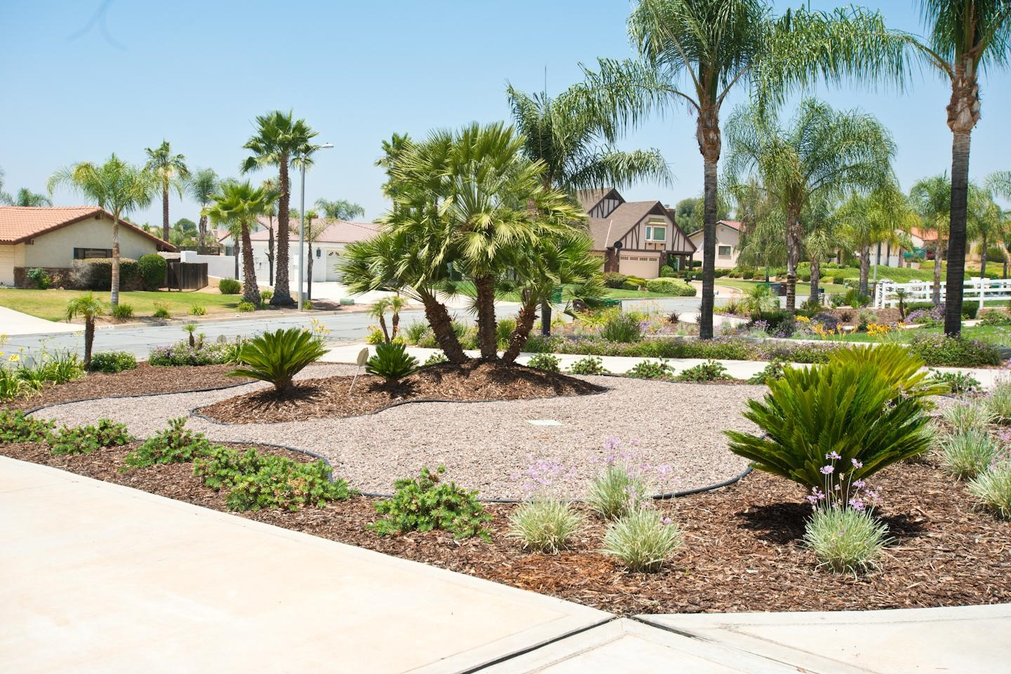 Tips for gardening during a drought recruit easy for Landscape gardening company